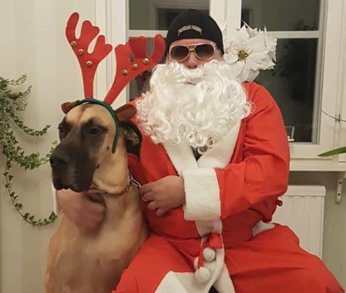 Paroni poroineen toivottaa Hyvää Joulua!